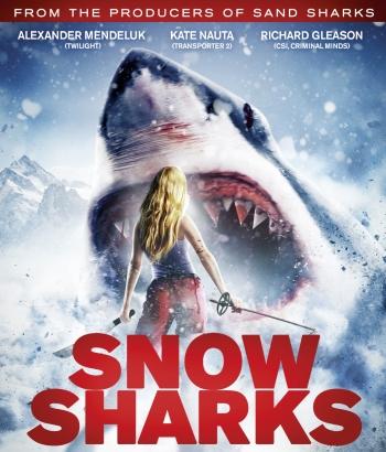 snow_sharks
