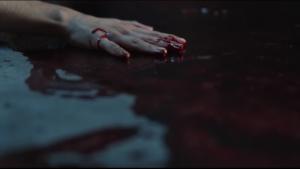 bloodpet