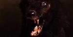monsterwolf2